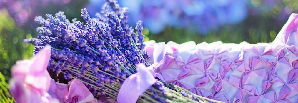 Mit Hilfe von Lavendel abnehmen – geht das?